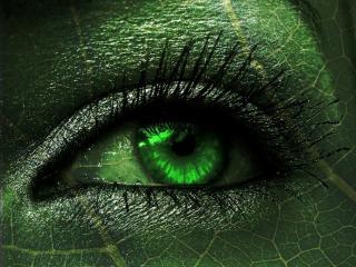 обои Зеленый глаз фото