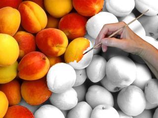 обои Раскрашенные персики фото