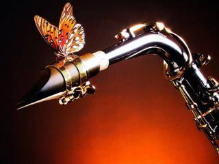 обои Бабочка и саксафон фото