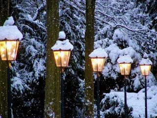 обои Фонари зимы фото