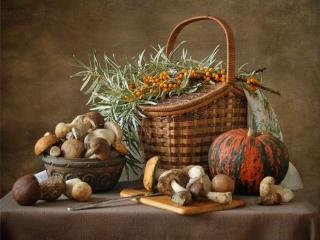 обои Натюрморт - Осенне-дачный фото
