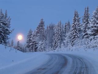 обои Зимняя дорога к луне фото