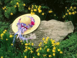 обои Шляпка с цветами фото