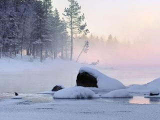 обои Морозный туман фото