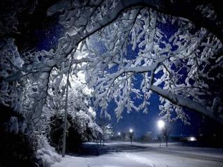 обои Снег в ночном городе фото