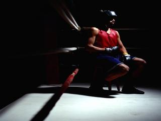 обои Чёрный Боксёр фото