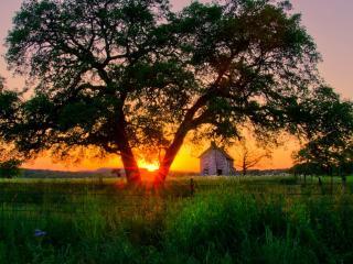 обои Лучи заходящего солнца над участком домика фото