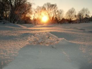 обои Солнце над снегом фото