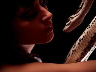 обои Девушка с извивающейся змеей фото