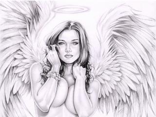 обои Рисунок прекрасного ангела фото