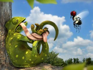 обои Связанный хамелеон и муха фото