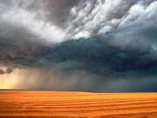 обои Дожди надвигаются на поле фото