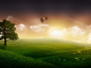 обои Воздушные шары над полем фото
