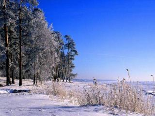 обои Берег замёрзшего озера фото