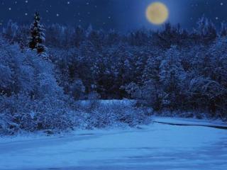 обои Зимняя,   светлая ночь фото