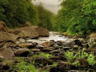 обои Каменистый весенний ручей фото