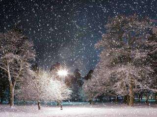 обои Одинокий фонарь под тихим снегом фото
