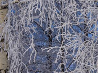 обои Рисует узоры зима фото