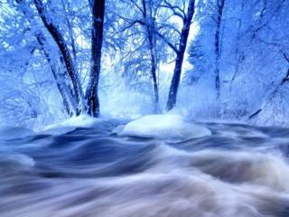 обои Голубая зима фото