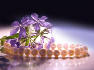 обои Цветы и жемчуг фото