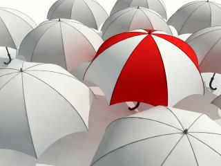 обои один зонт другого цвeта фото