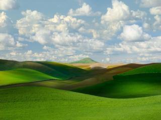 обои Зелёные холмы и равнины фото