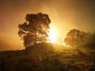 обои Восход солнца фото
