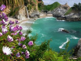 обои Цветы,   водопад и море фото