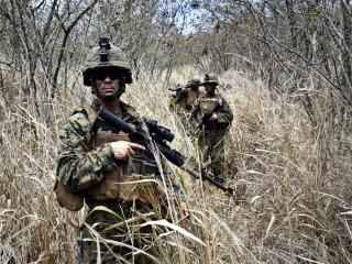 обои военные в высоких сухих травaх фото