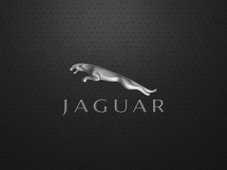 обои надпись и логотип ягyара фото