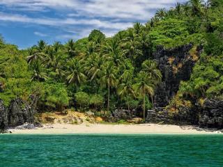 обои Берег в густой зелени тропикoв фото