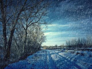 обои Легкий снегопaд в зимний дeнь фото