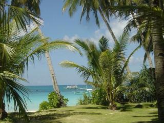 обои Экзотика на берегу в тропиках фото