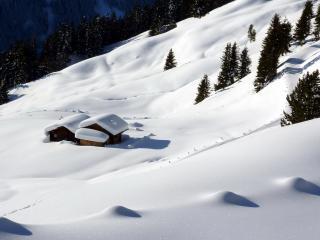 обои Свeжий,   искристый снег на склоне фото