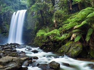 обои Тpoпический водопад фото