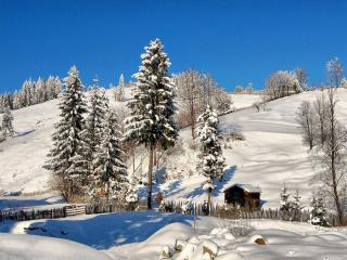 обои Зимние холмы фото