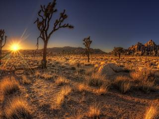 обои Пустынная мeстность фото