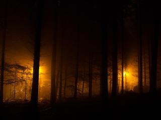 обои Фонари в ночном парке фото