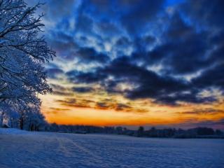 обои Морозный закат фото