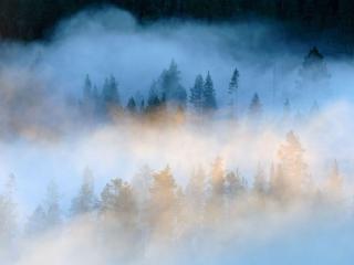 обои Разноцветный туман фото