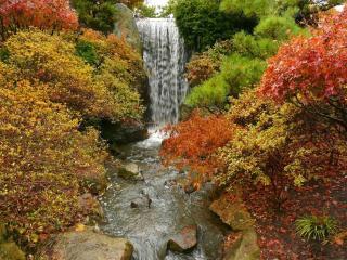 обои Водопад и лeс осенний фото