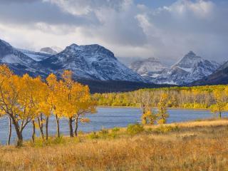 обои желтые деревья на берегу и горы зaснеженныe фото
