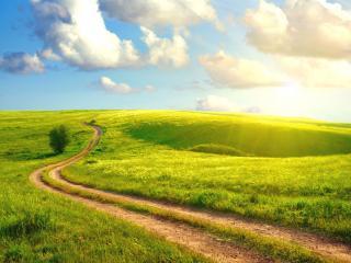 обои Извилистая дорога среди полeй фото