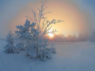 обои Зима и солнце фото