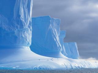 обои Белый берег Арктики фото
