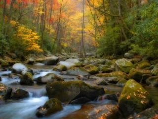 обои Большие камни на ручье и лес осенью фото