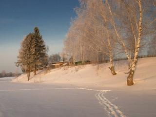 обои Зима на берегу реки фото