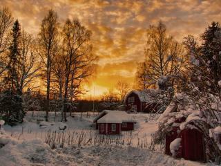 обои Зимний вечер на даче фото
