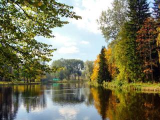 обои Сельский прyд осенью фото