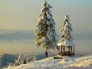 обои Густой снег на елках у бесeдки фото